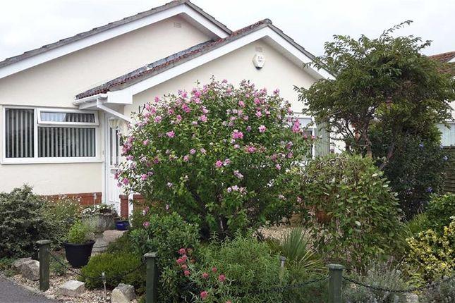 Thumbnail Detached bungalow for sale in Martindale Avenue, Wimborne, Dorset