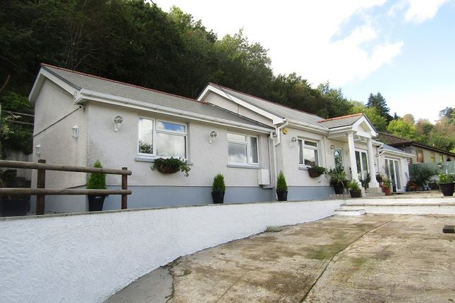 Thumbnail Detached bungalow for sale in Clydach Road, Craig-Cefn-Parc, Swansea, City And County Of Swansea.