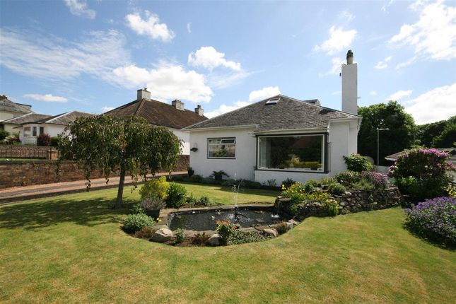 Thumbnail Detached house for sale in Alexandra Drive, Alloa