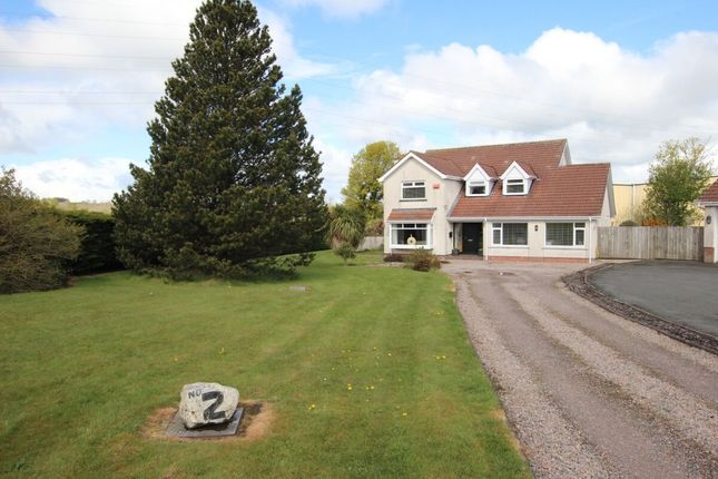Thumbnail Detached house for sale in Hydepark Close, Newtownabbey