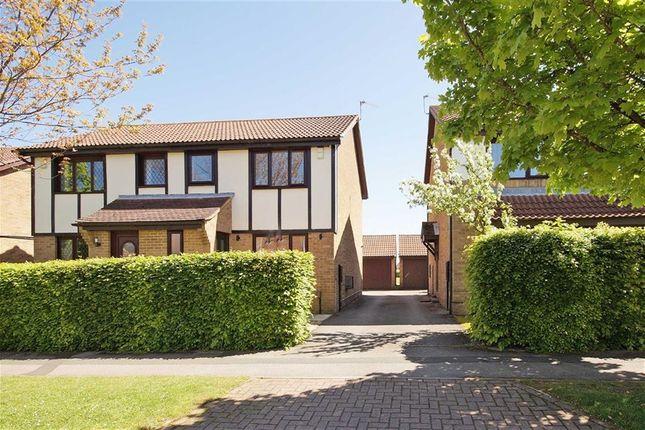 Thumbnail Semi-detached house to rent in Arthurs Avenue, Harrogate, North Yorkshire