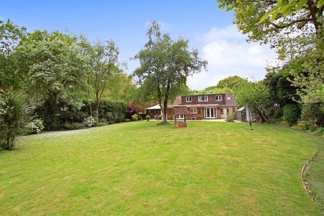 Thumbnail Detached house for sale in Durfold Wood, Plaistow, Billingshurst