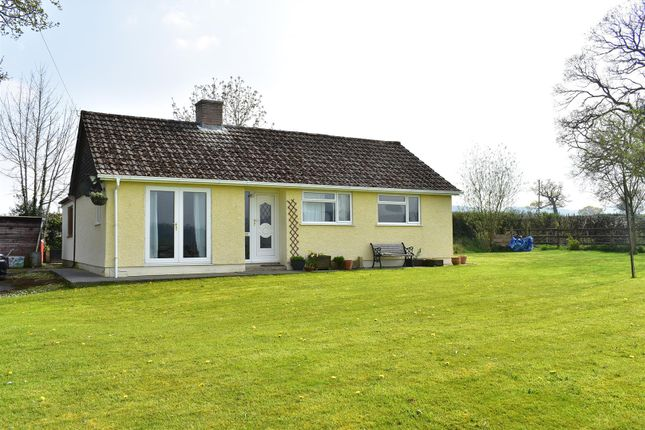 Thumbnail Detached bungalow for sale in Llandeilo