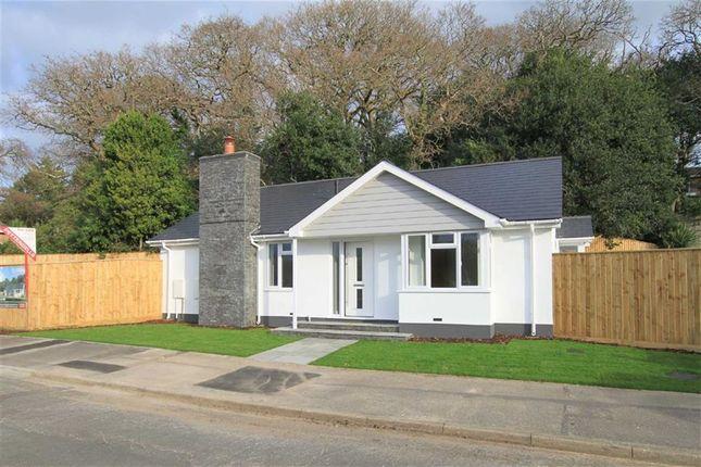 Thumbnail Detached bungalow for sale in Manning Avenue, Highcliffe, Christchurch, Dorset