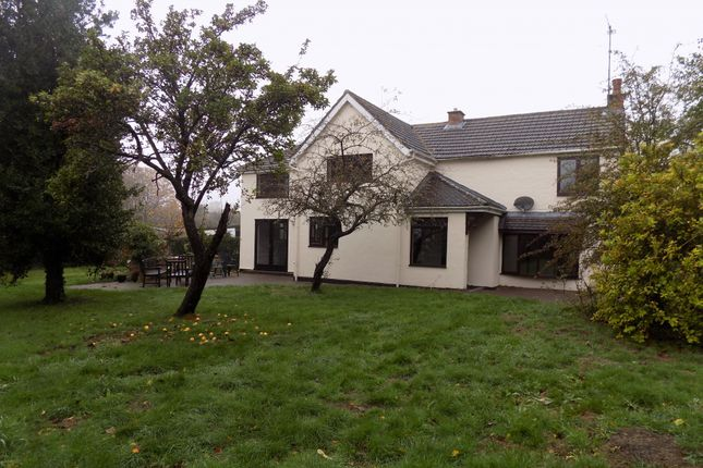 Thumbnail Detached house to rent in Streatley Road, Luton, Bedfordshire