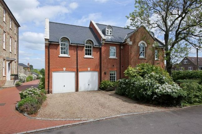 Thumbnail Detached house to rent in Birchfield, Sundridge, Sevenoaks