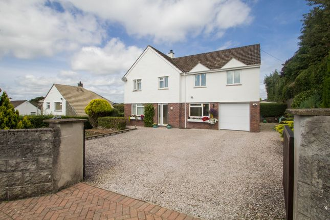 Thumbnail Detached house for sale in Deer Park Road, Tavistock