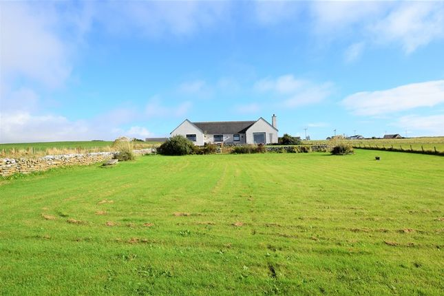 Thumbnail Bungalow for sale in Tokanner Hillhead, Lybster