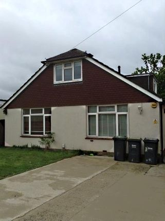 Thumbnail Detached bungalow to rent in Kings Road, Cowplain, Waterlooville