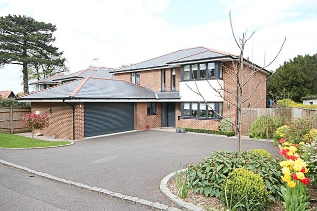 Thumbnail Detached house to rent in Foxley Drive, Bishops Stortford, Herts