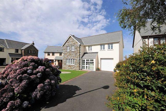 Thumbnail Detached house for sale in Goaman Park, Hartland, Devon