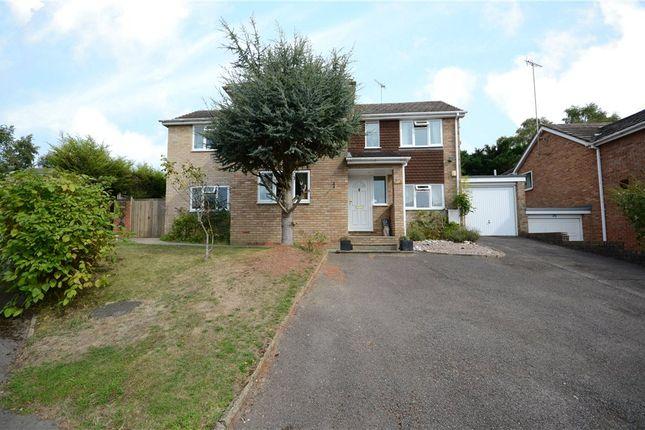 Thumbnail Detached house for sale in Long Mickle, Sandhurst, Berkshire