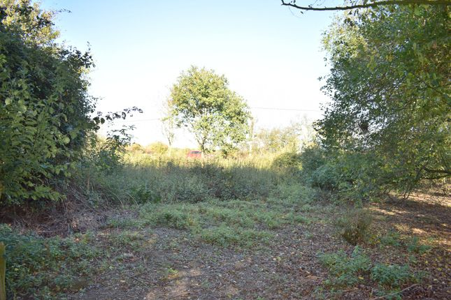 Thumbnail Land for sale in Bromley Road, Elmstead, Colchester