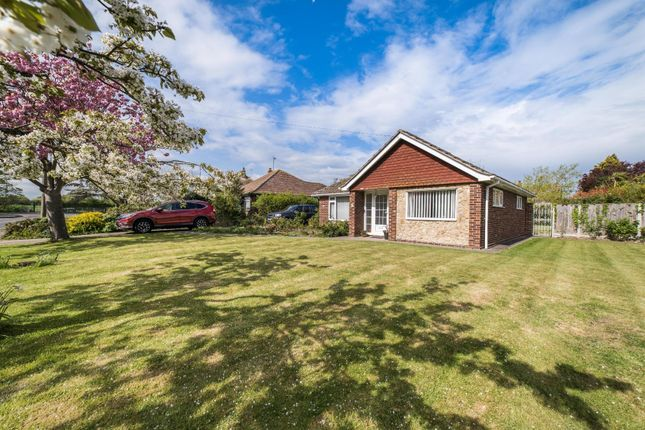 Thumbnail Detached bungalow for sale in Ham Shades Lane, Whitstable