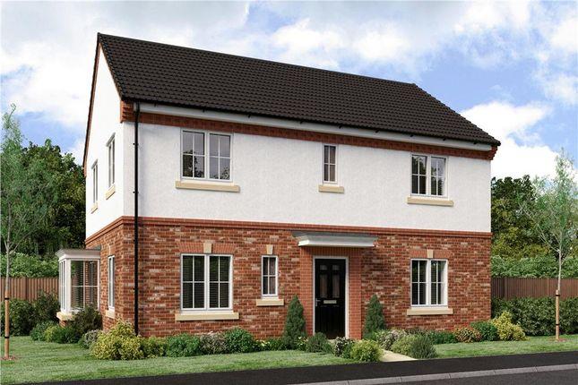 "Thumbnail Detached house for sale in ""Stevenson"" at Joe Lane, Catterall, Preston"