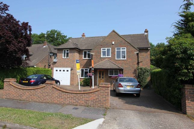 Thumbnail Detached house to rent in Birchdale, Gerrards Cross