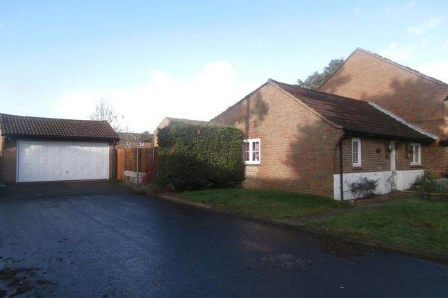 Thumbnail Detached bungalow to rent in Queens Pine, Bracknell