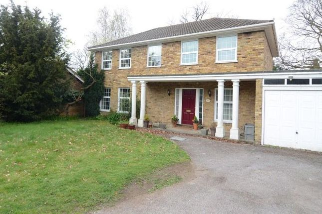 Thumbnail Detached House To Rent In Avenue Road Farnborough
