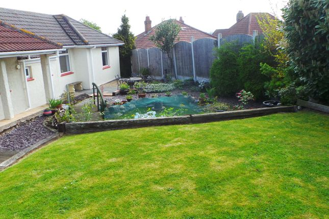 Thumbnail Detached bungalow to rent in Ebdon Road, Weston-Super-Mare