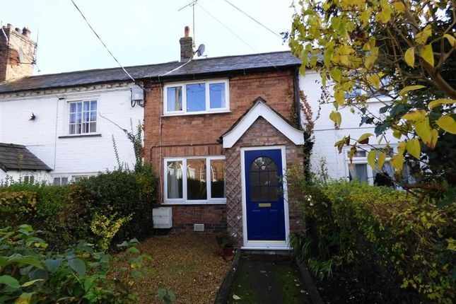Thumbnail Terraced house to rent in 38 Salop Road, Overton, Wrexham