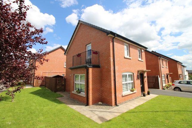 Thumbnail Detached house for sale in Fountain Crescent, Thaxton, Lisburn