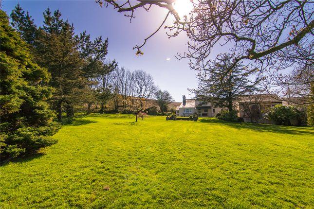 Picture No. 28 of Long Oaks Cottage, Penmaen, Swansea, Abertawe SA3