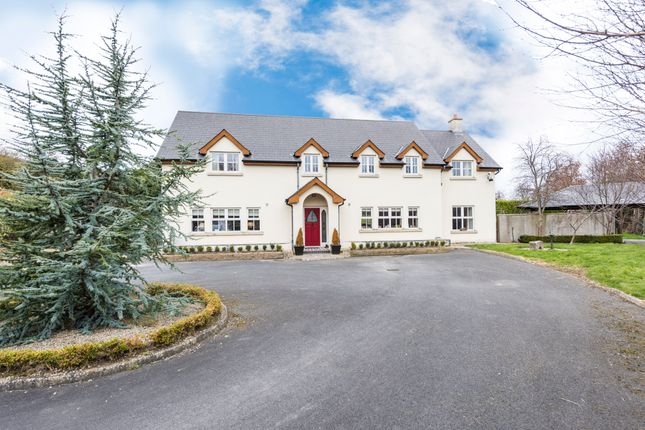 Thumbnail Detached house for sale in St. Andrews, Inch, Balrothery, Dublin