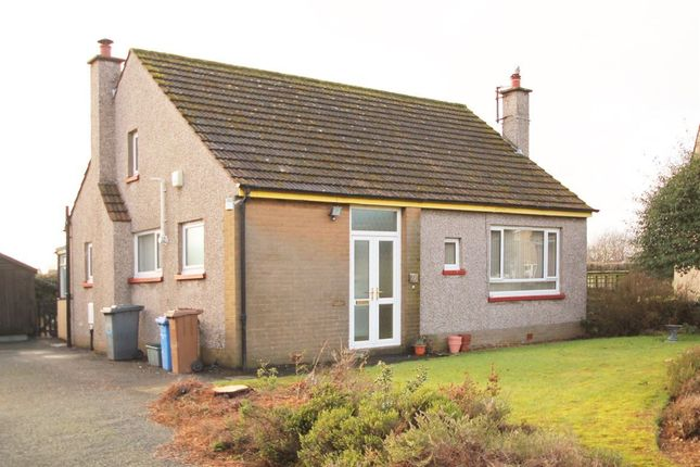 Thumbnail Bungalow to rent in Claypotts Place, Broughty Ferry, Dundee