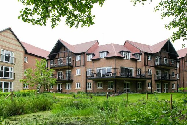 Thumbnail Property for sale in Meadowside, Storrington, Pulborough