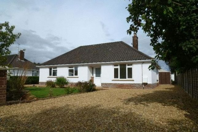 Thumbnail Bungalow to rent in North Drive, Fakenham