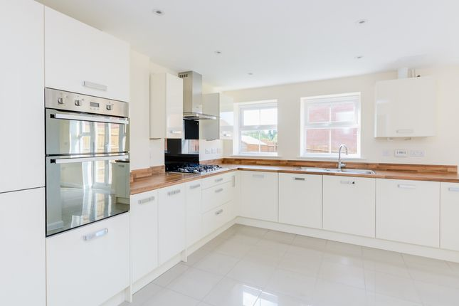Thumbnail Detached house to rent in Shearwater Road, Hemel Hempstead