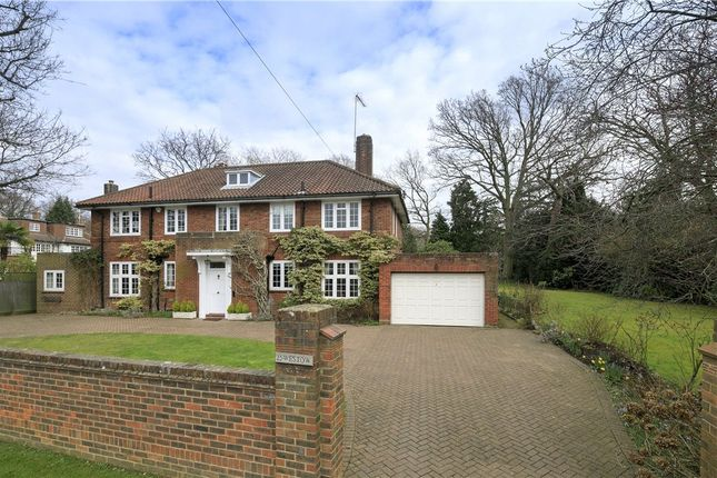 Thumbnail Detached house for sale in Barham Road, Wimbledon