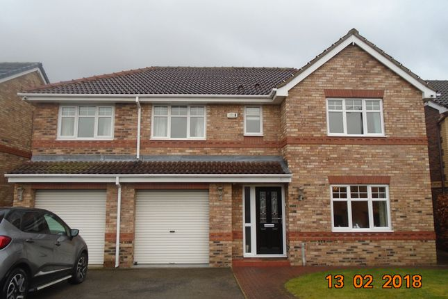 Thumbnail Detached house to rent in Wintersett Drive, Lakeside, Doncaster