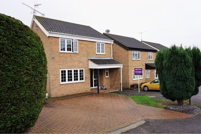Thumbnail Link-detached house for sale in Markhams Close, Haverhill