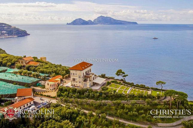 Thumbnail Farm for sale in Massa Lubrense, Campania, Italy