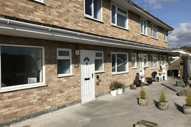 Thumbnail Property to rent in Lisher Road, Lancing