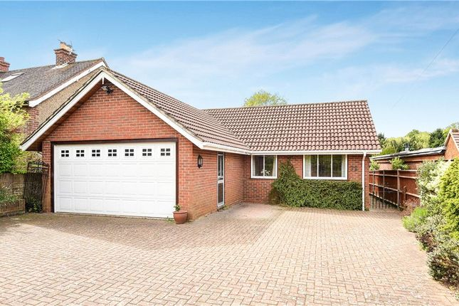 Thumbnail Detached bungalow for sale in Bousley Rise, Ottershaw, Chertsey