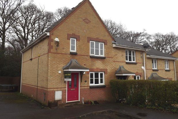 Thumbnail Property to rent in Chiltern Drive, Verwood