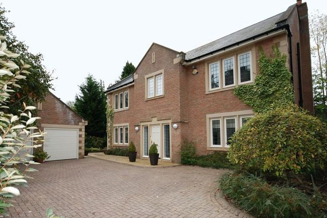 Thumbnail Detached house for sale in Morpeth