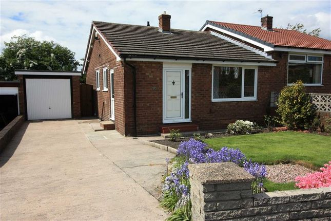Thumbnail Semi-detached bungalow to rent in Breightmet Drive, Breightmet, Bolton