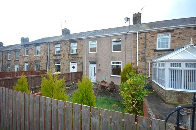 Thumbnail Terraced house to rent in Durham Street, Langley Park, Durham