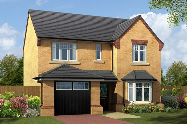 "Thumbnail Detached house for sale in ""The Nidderdale"" at Carr Green Lane, Mapplewell, Barnsley"