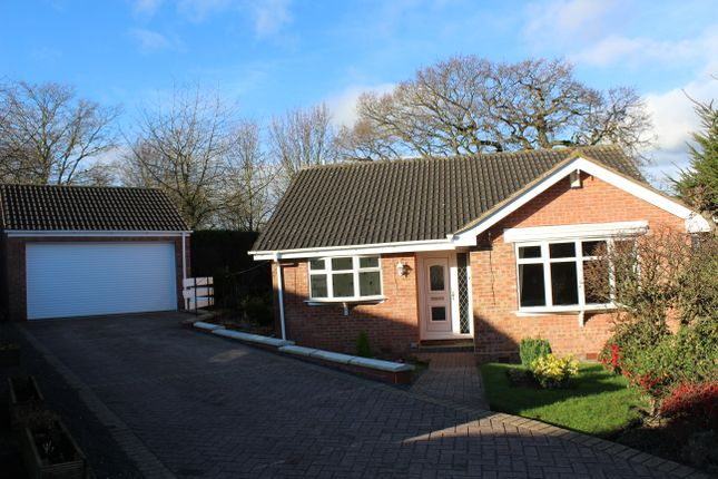 Thumbnail Detached bungalow to rent in Holme Croft, West Hallam