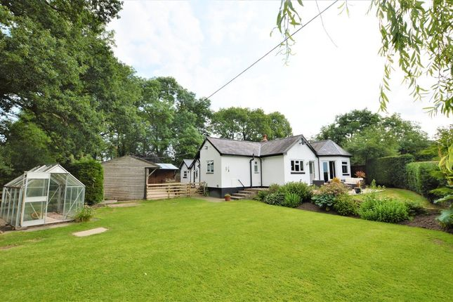 Thumbnail Detached bungalow for sale in Aldersey Lane, Tattenhall, Chester