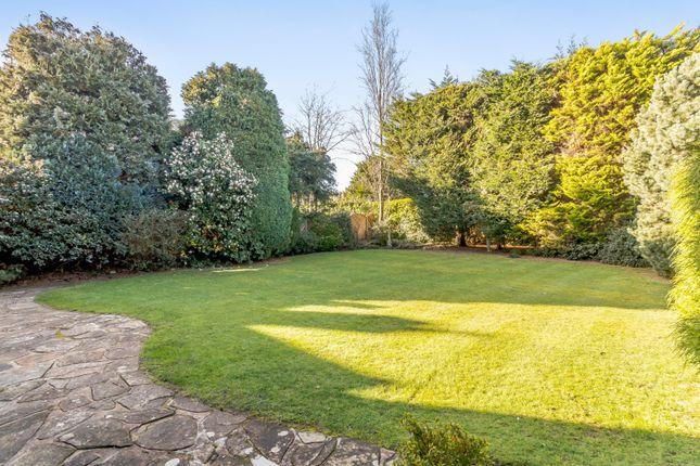 Garden of Ashley Park Avenue, Walton-On-Thames KT12