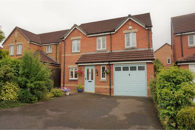Thumbnail Detached house for sale in Brandon Walk, Sutton-In-Ashfield