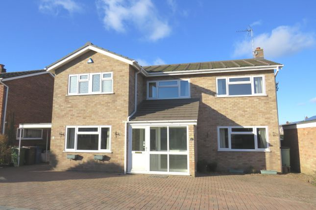 Thumbnail Property to rent in Glenalmond, Norwich