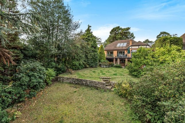 Thumbnail Detached house for sale in Tekels Avenue, Camberley, Surrey