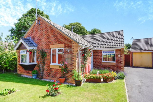 2 bed detached bungalow for sale in Dashwood Close, Sturminster Newton