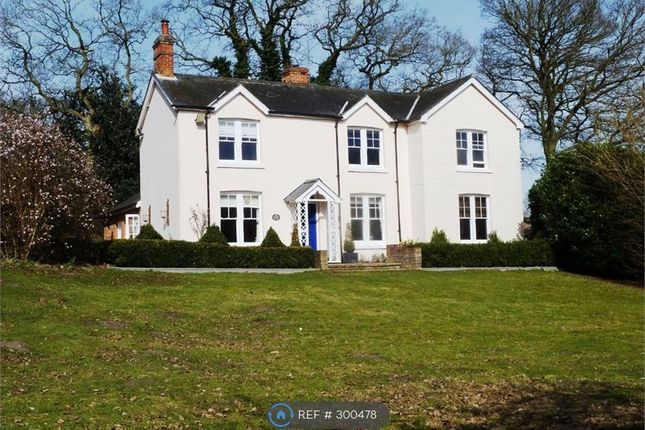 Thumbnail Detached house to rent in Sloe Hill, Halstead